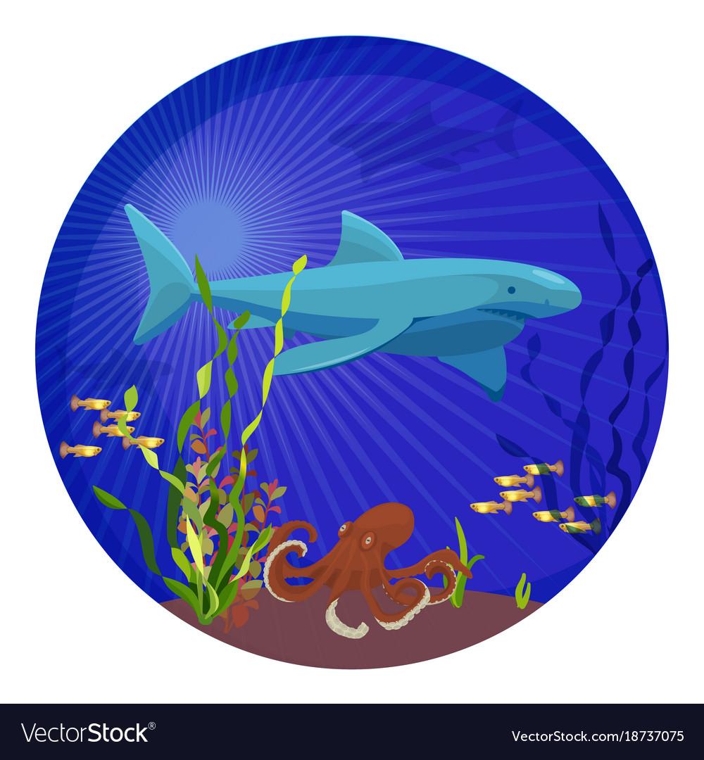 Deep sea creatures big shark small fish and