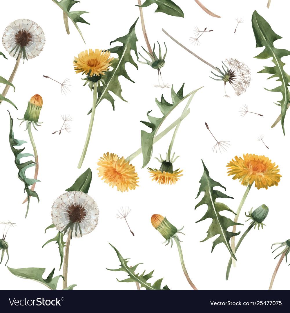 Watercolor dandelion blowball pattern