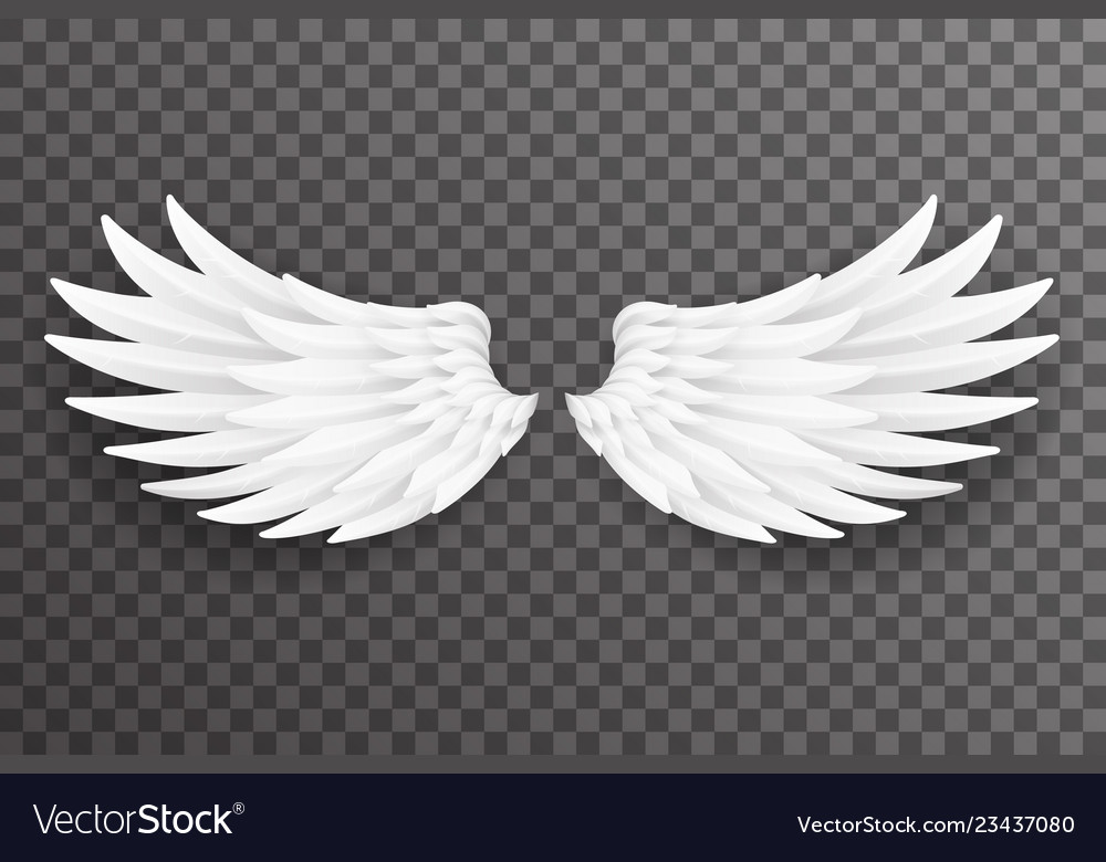 White bird angel fly wings 3d realistic design