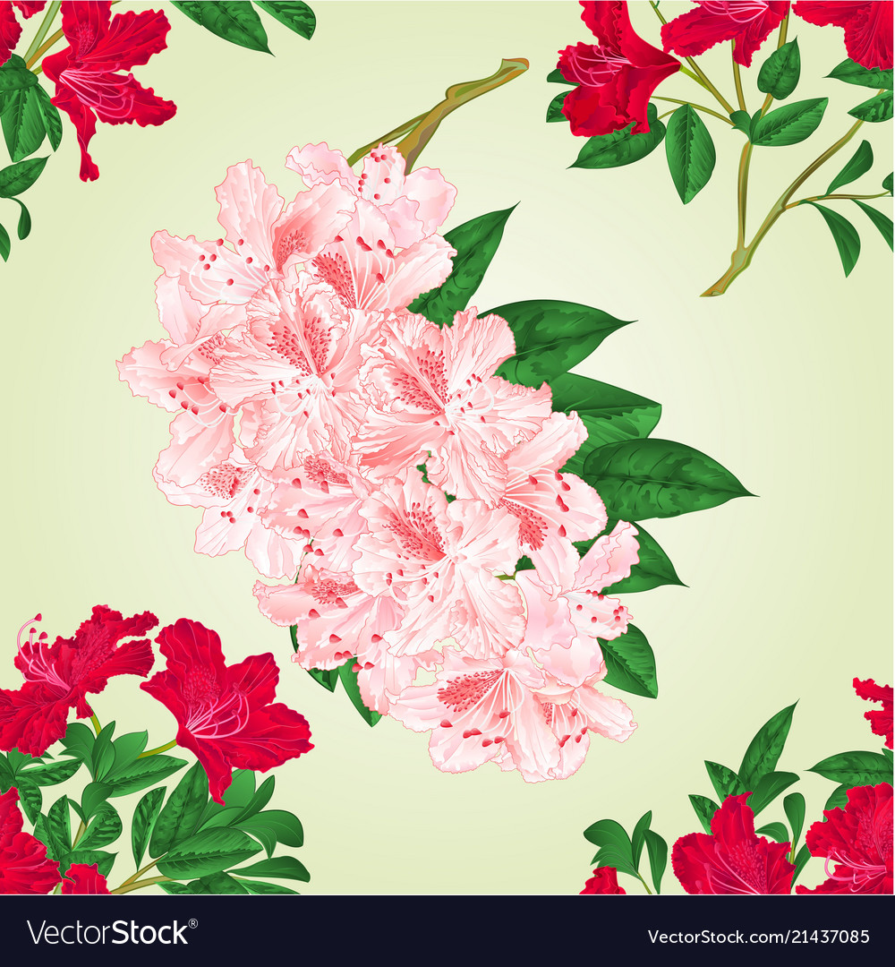 Seamless texture rhododendrons twigs