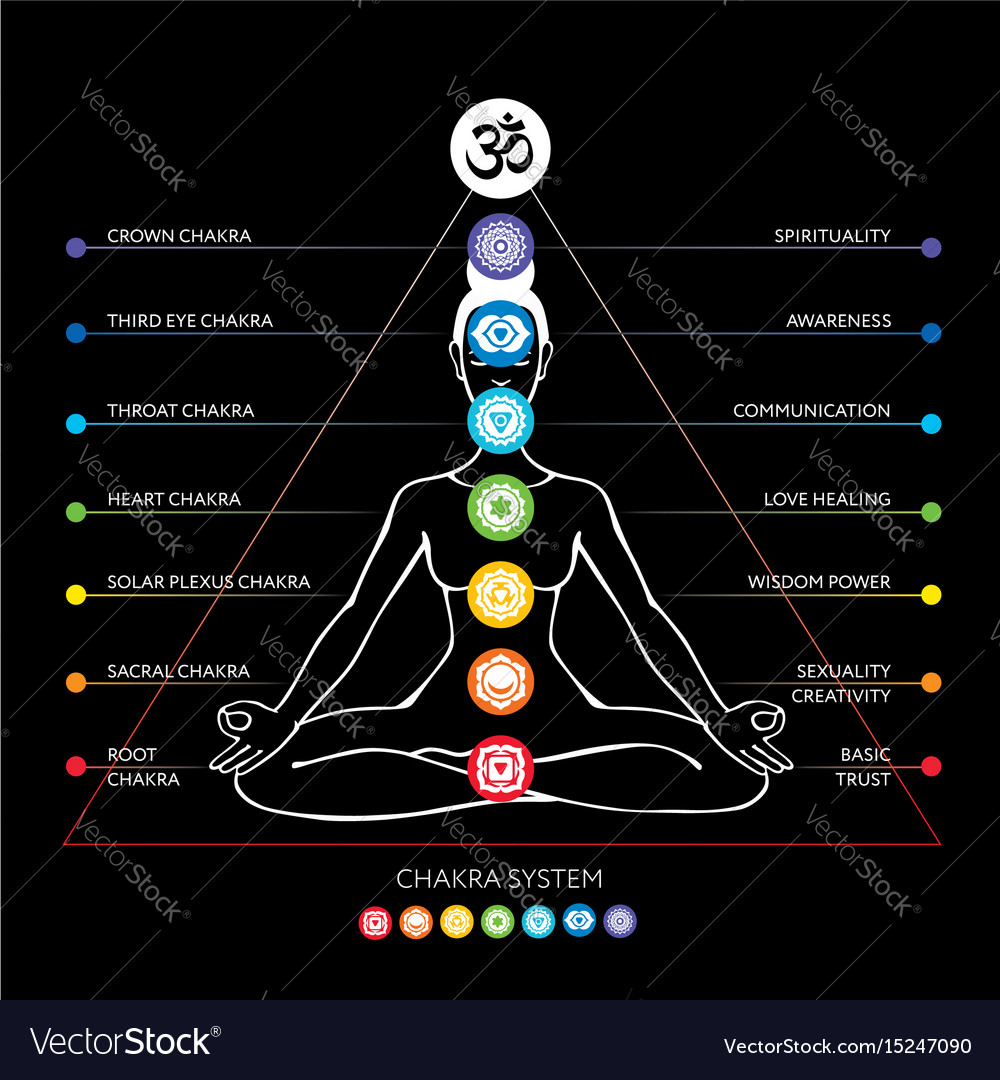 Chakras System Of Human Body Royalty Free Vector Image