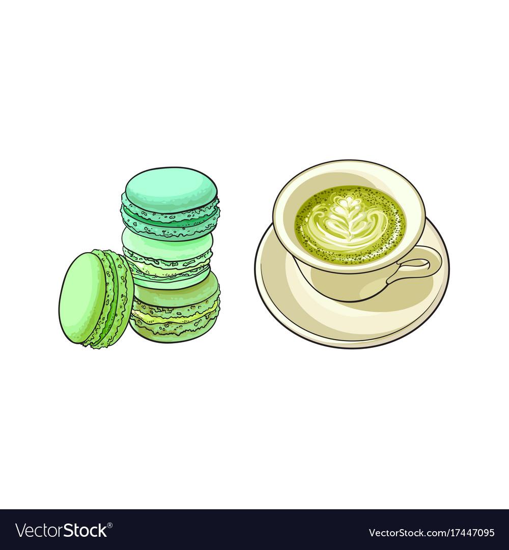 Sketch cap of mathca tea macaroni vector image