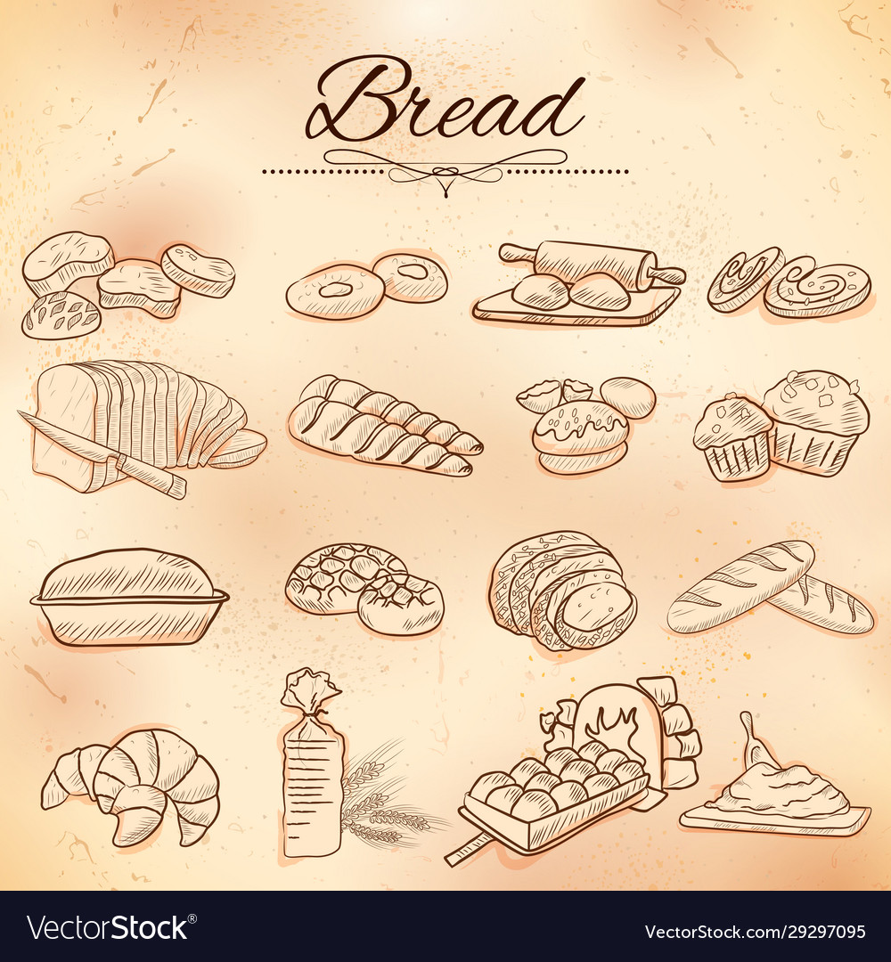 Template different types bread and loafs