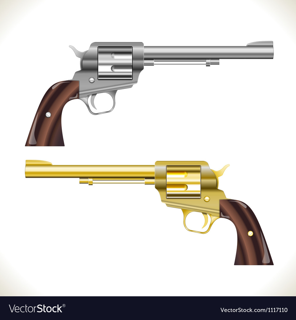 Revolver Gun vector image