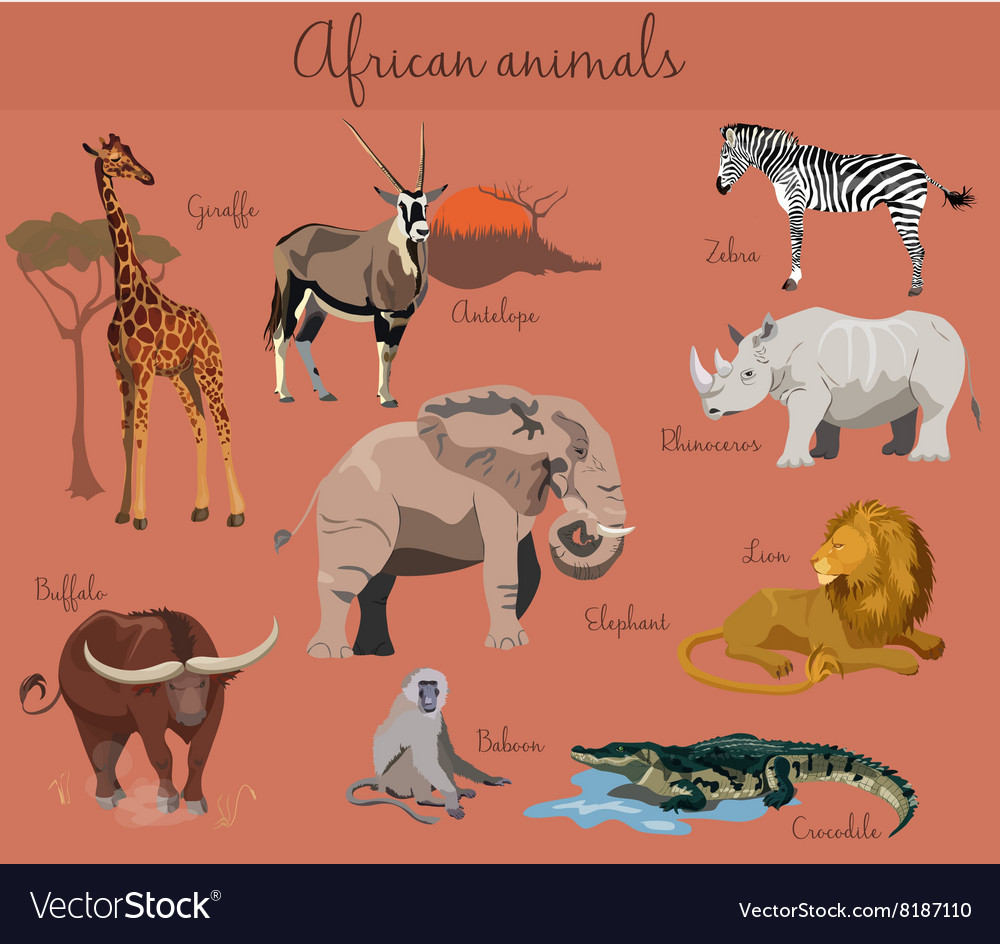 Wild african animals set with nature elements vector image