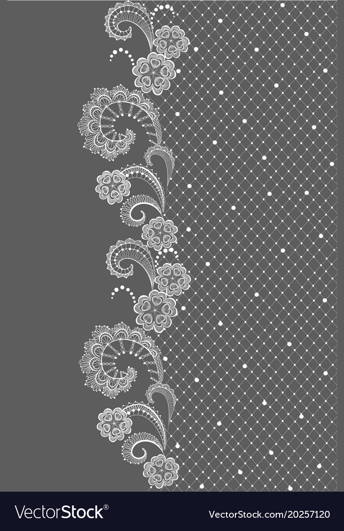 Vertical seamless border with lace pattern vector image