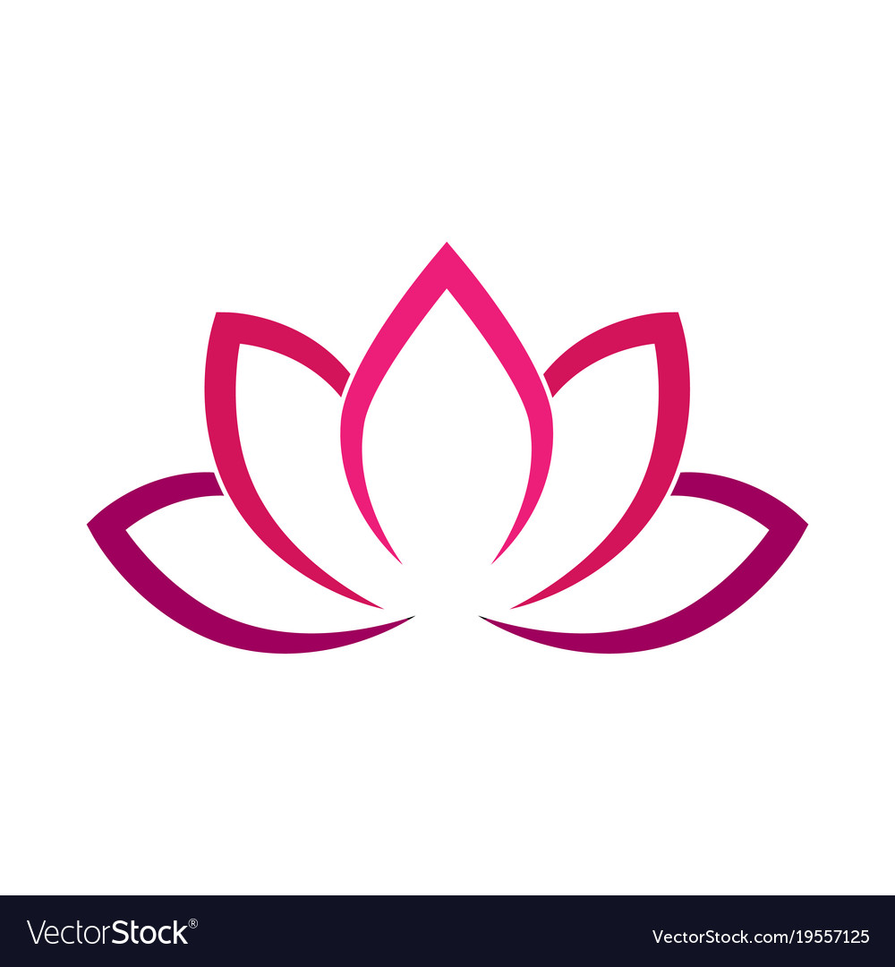 Calligraphic lotus blossom in pink-violet colors