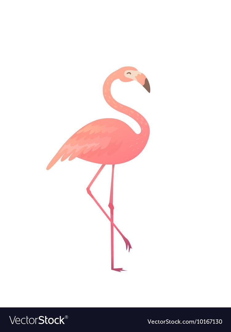 Download A pink flamingo Royalty Free Vector Image - VectorStock