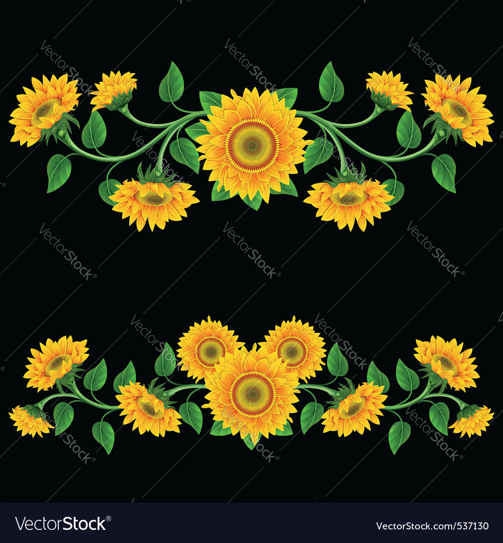 Yellow sunflowers on the black background design e yellow sunflowers on the black background design e vector image mightylinksfo