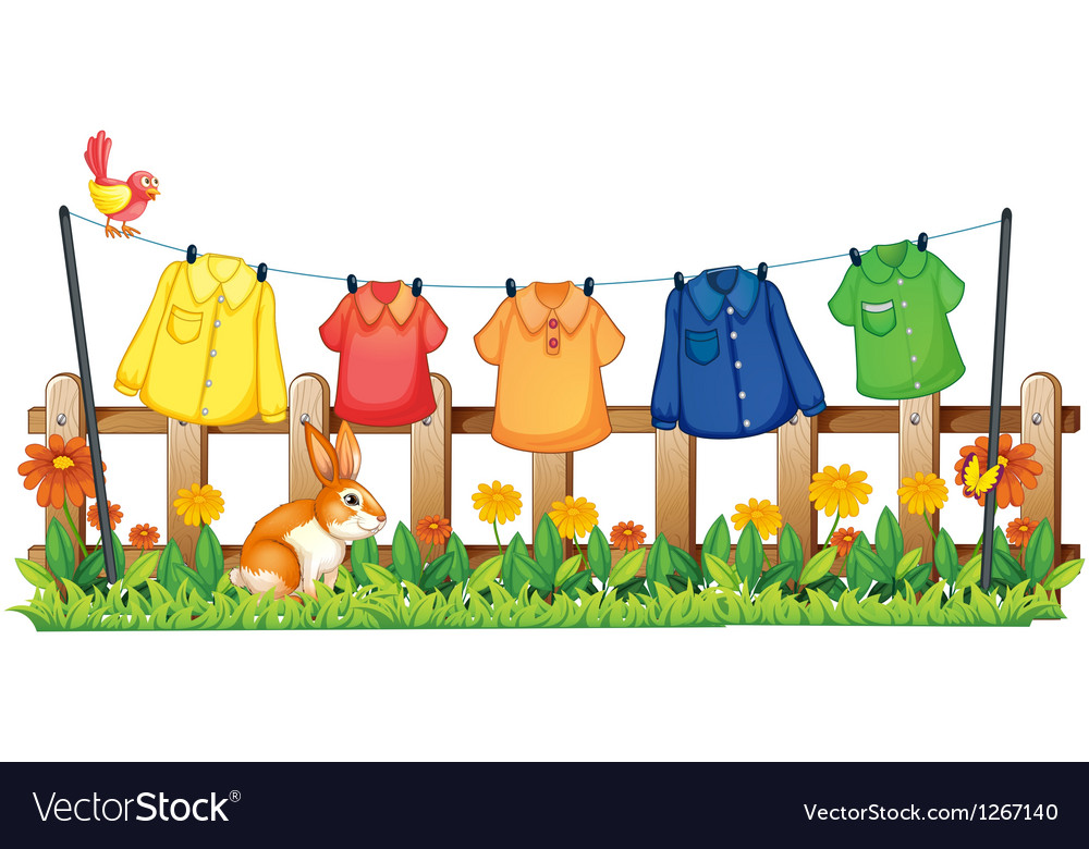 A garden with hanging clothes and a bunny vector image