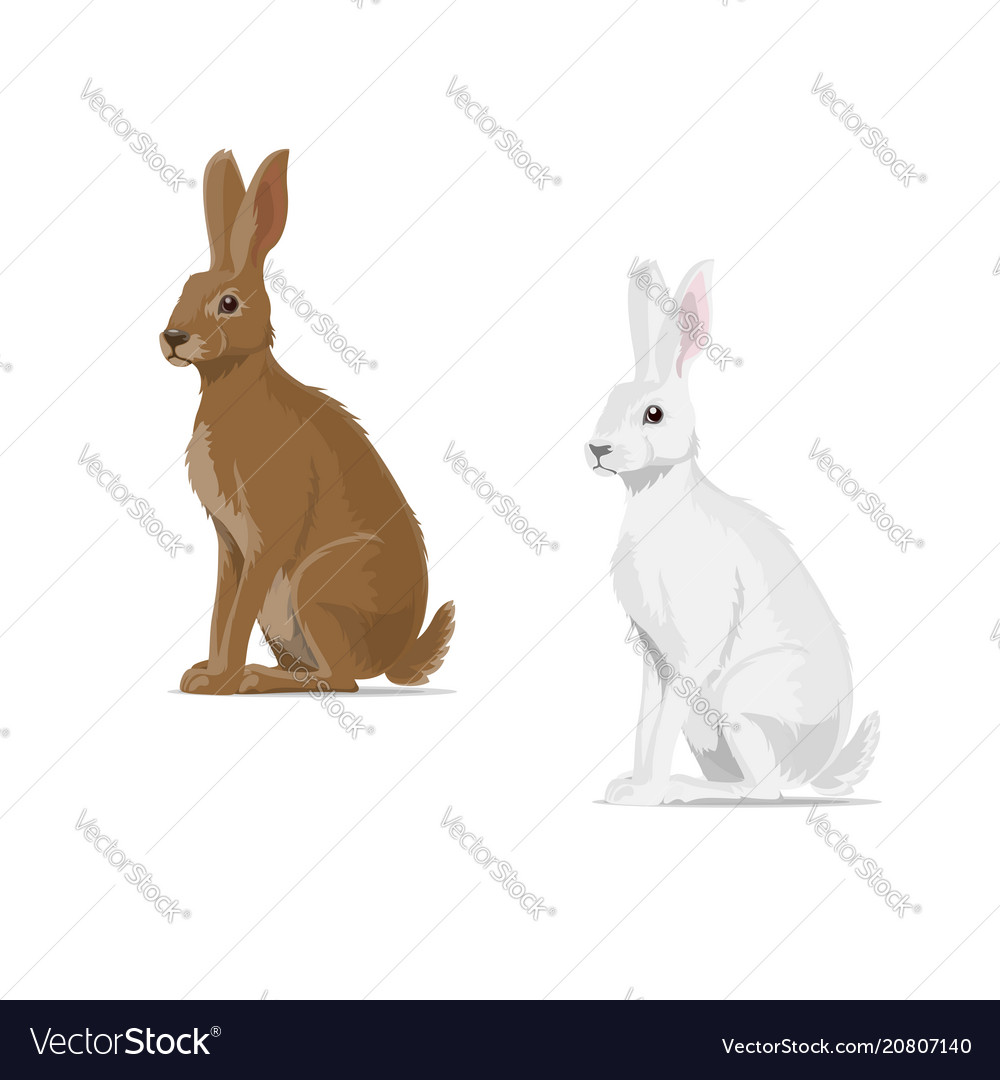 Rabbit hare animal flat icon