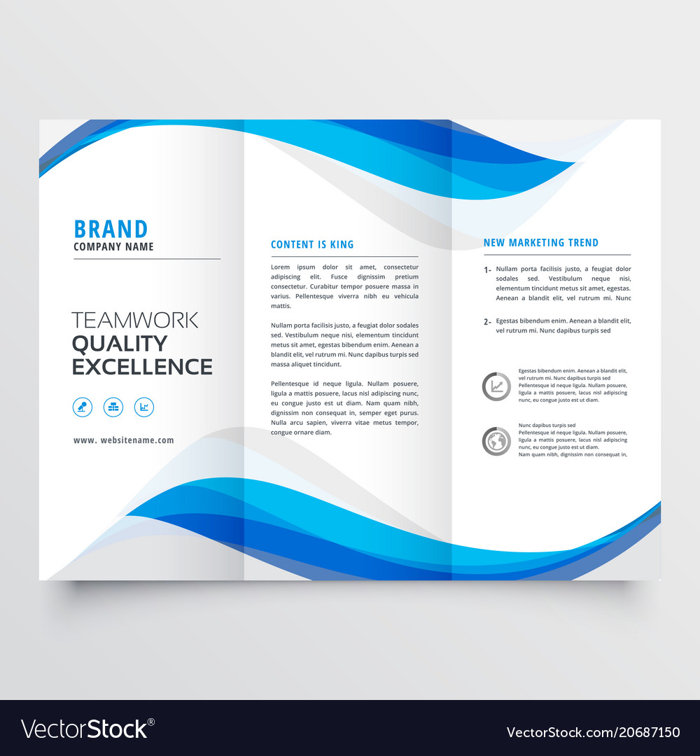 Trifold Brochure Template Vector Image