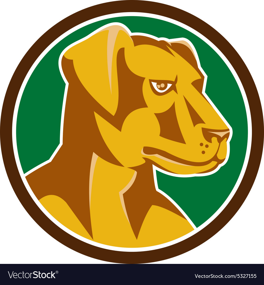 Labrador Golden Retriever Dog Head Circle Retro