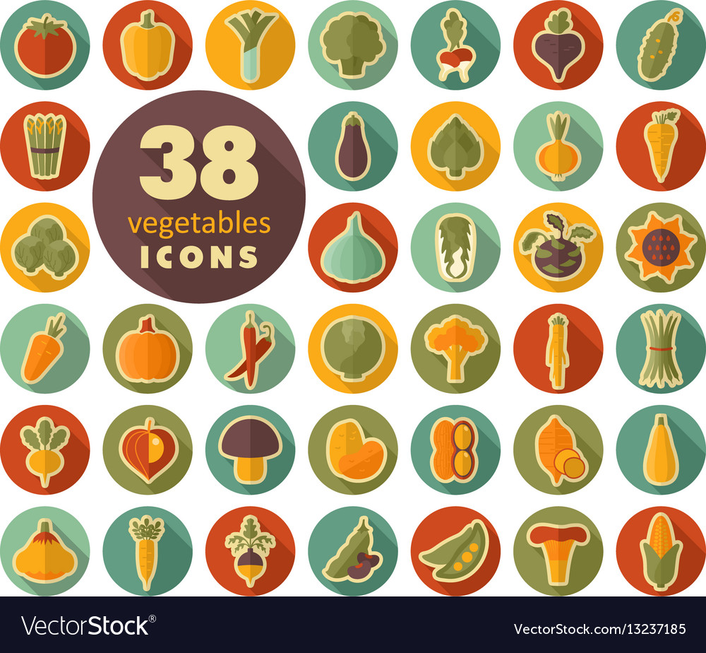 Vegetables flat retro icons set vector image