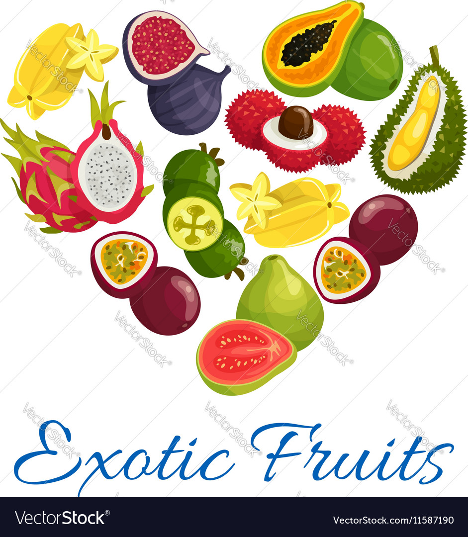 Exotic Fruits Heart Shape Symbol With Fruit Icons Vector Image
