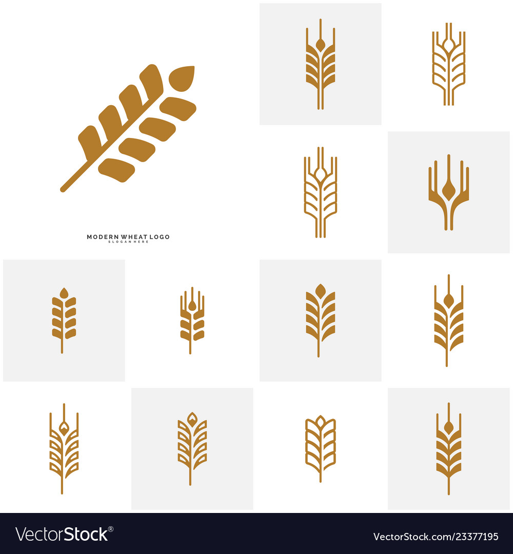 Set of wheat luxury grain and bread labels nature