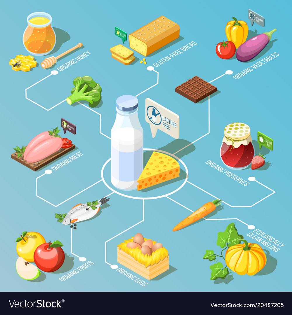 Organic food isometric flowchart vector image
