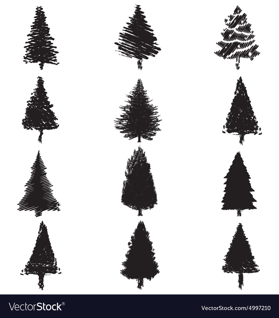 abstract pine trees silhouette royalty free vector image rh vectorstock com vector pine tree shape vector pine tree illustration