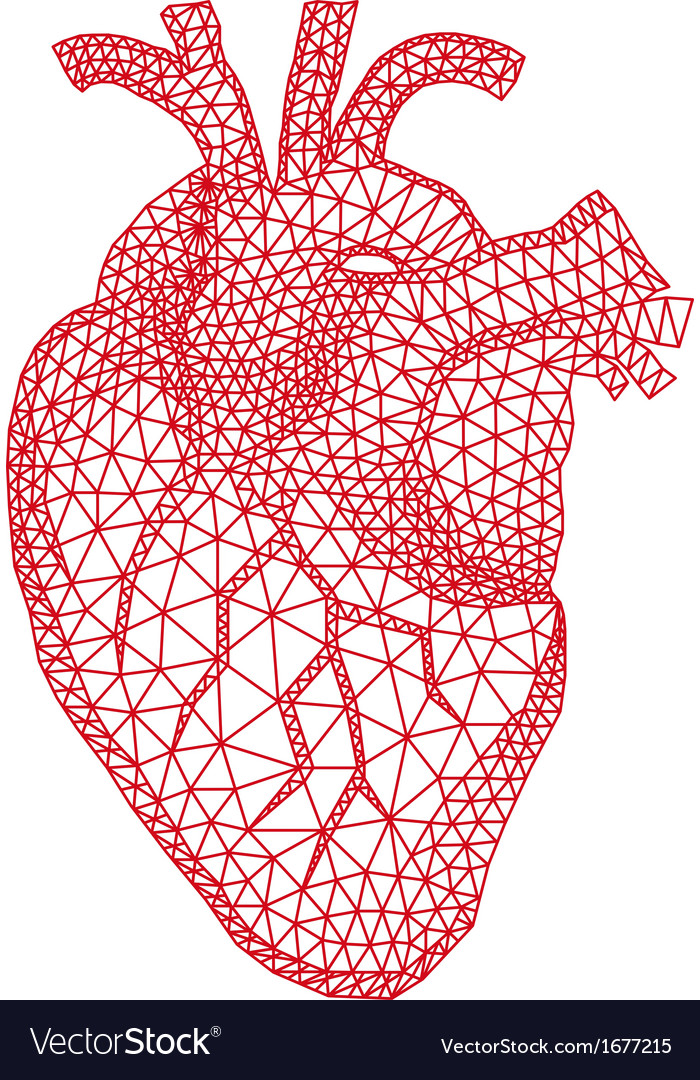 Human heart with geometric pattern