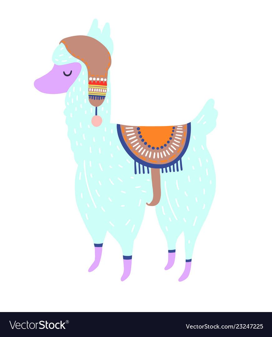 Funny llama isolated on white blue alpaca animal