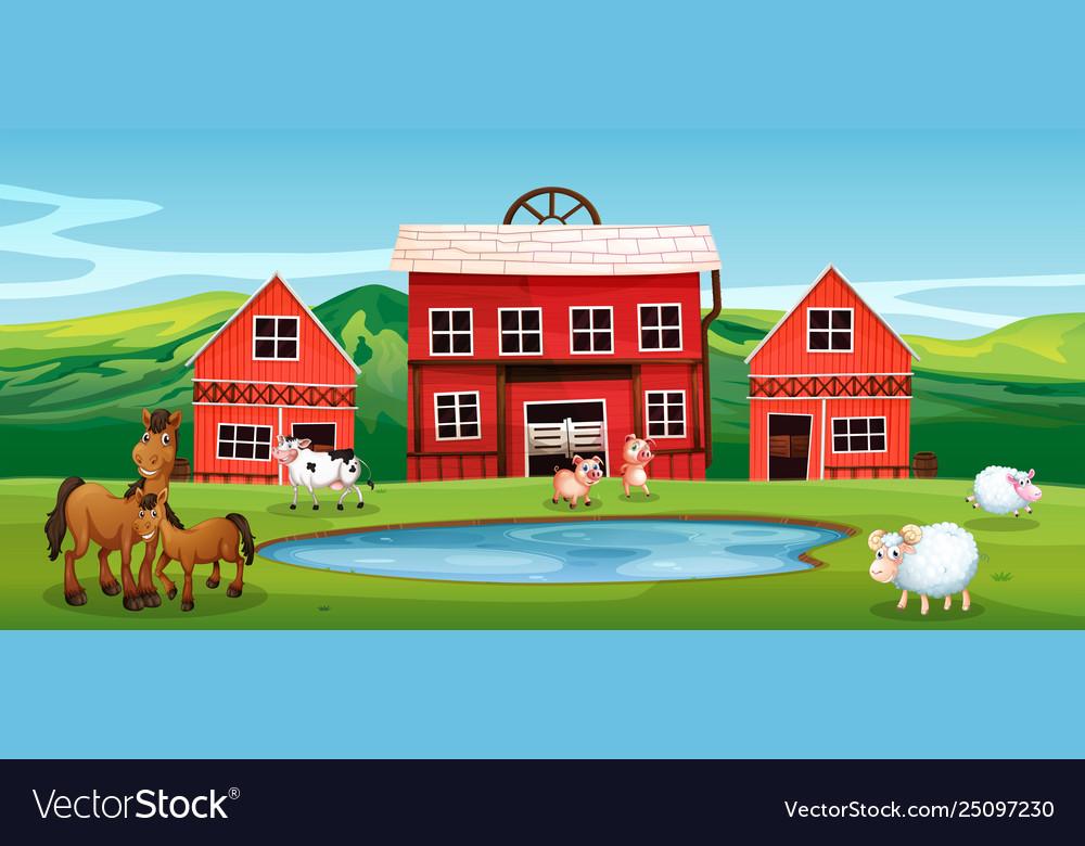 Farm animal at farmland