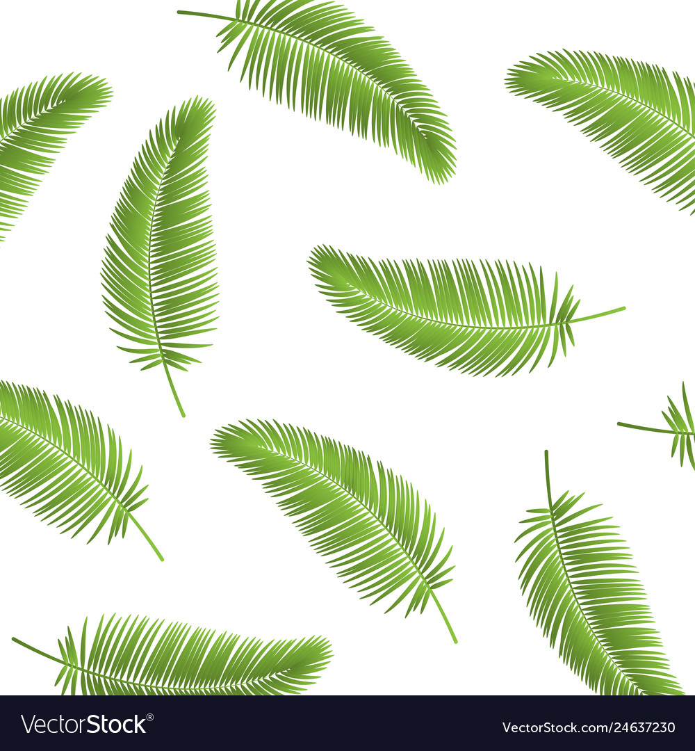 Palm leaf seamless pattern background palm leaves