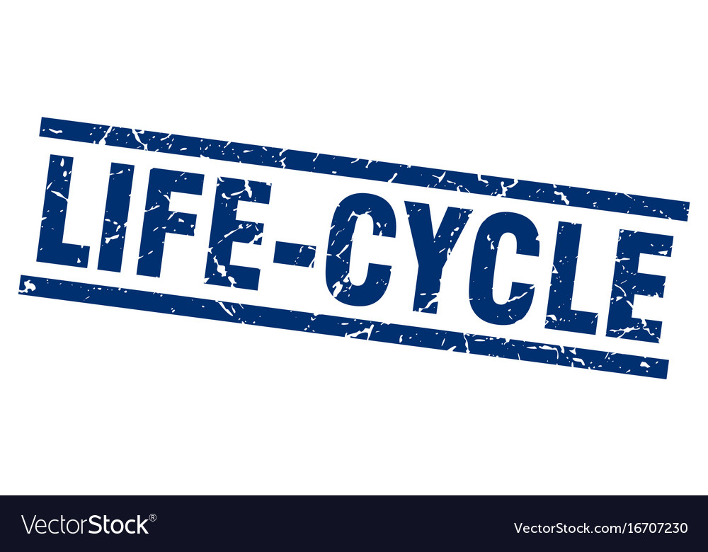 Square grunge blue life-cycle stamp vector image on VectorStock