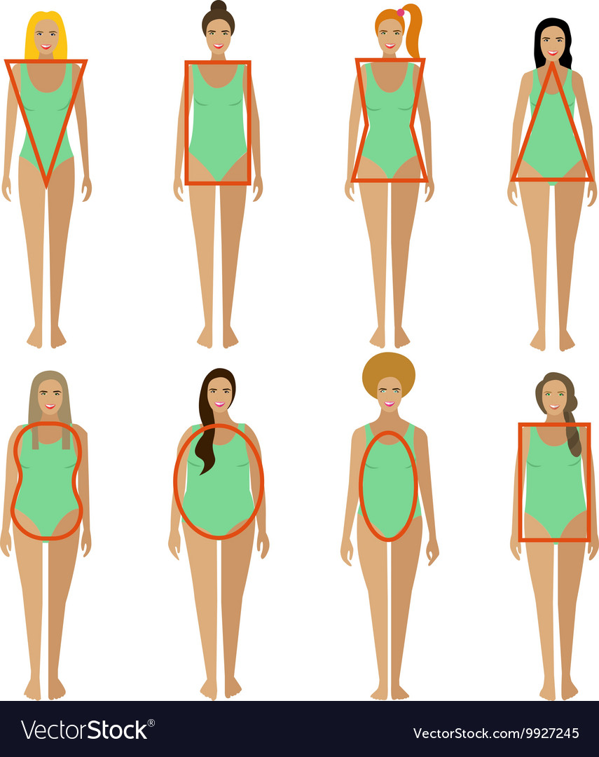 8e2acc04aa2 Different female body types Woman figure shapes Vector Image