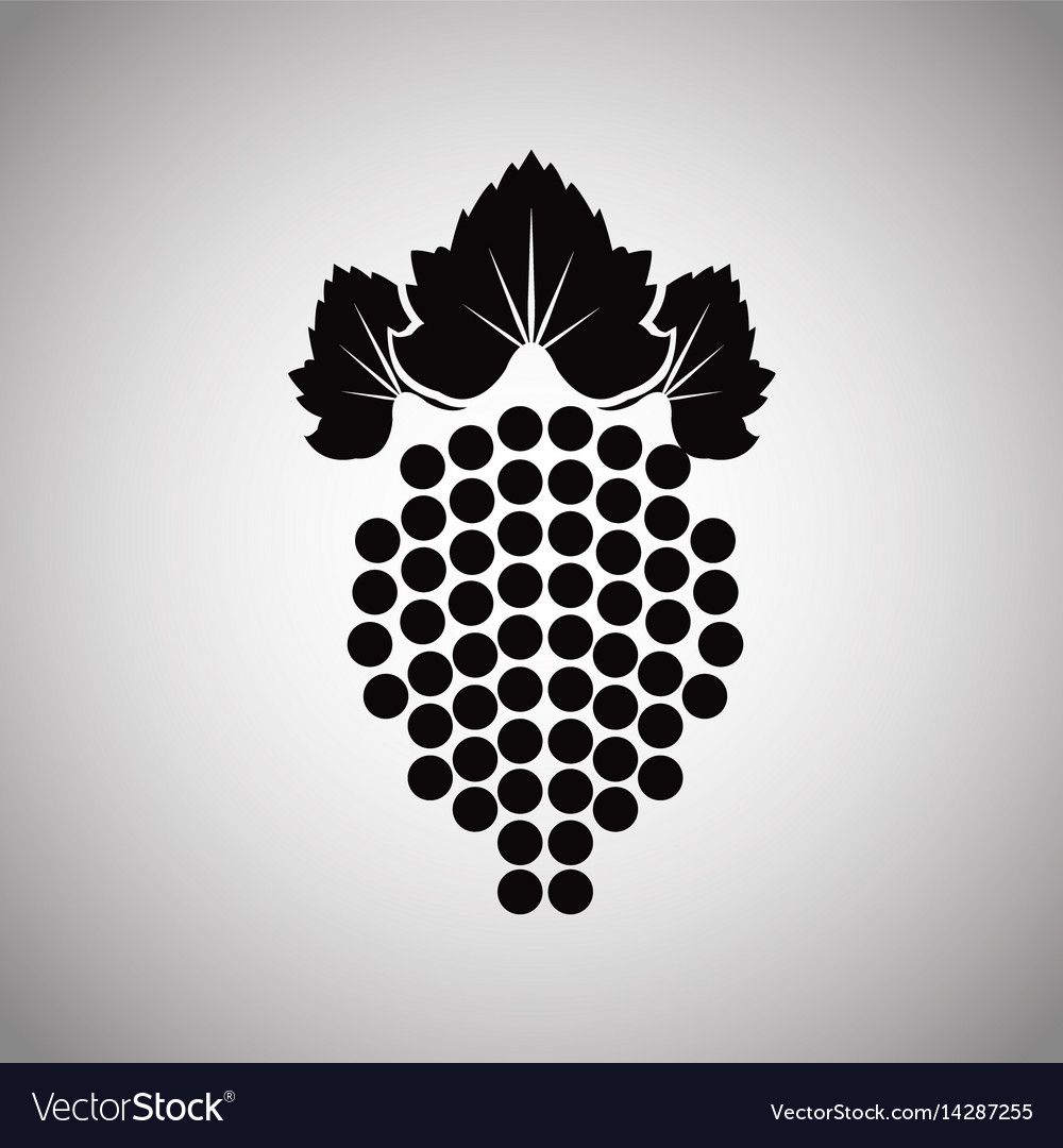 Grape fruit wine product image vector image