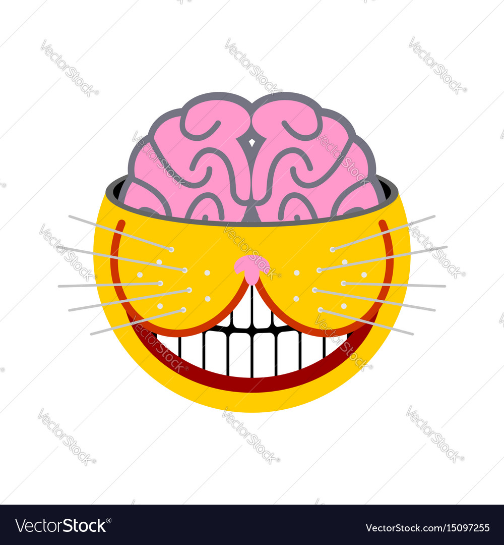 Smiling cat fantastic pet unusual animal isolated vector image