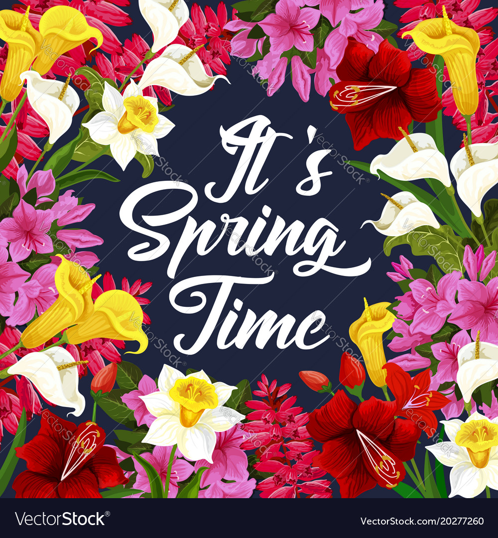 Springtime Poster With Spring Season Flower Frame Vector Image