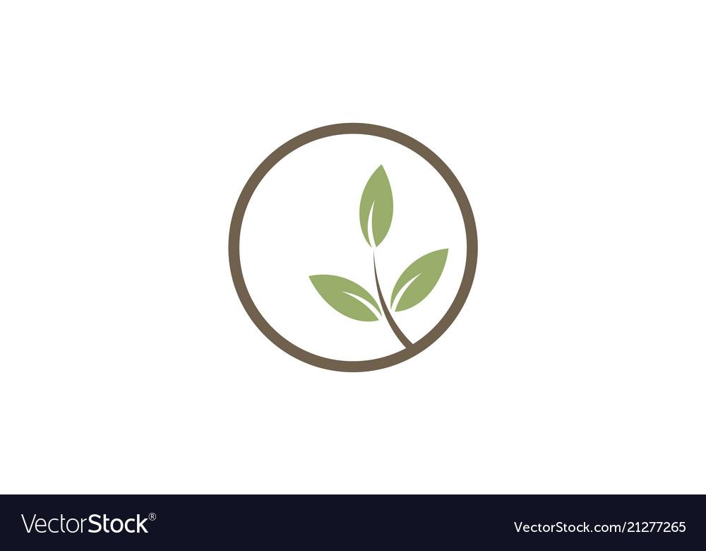 Green leaf seed organic logo