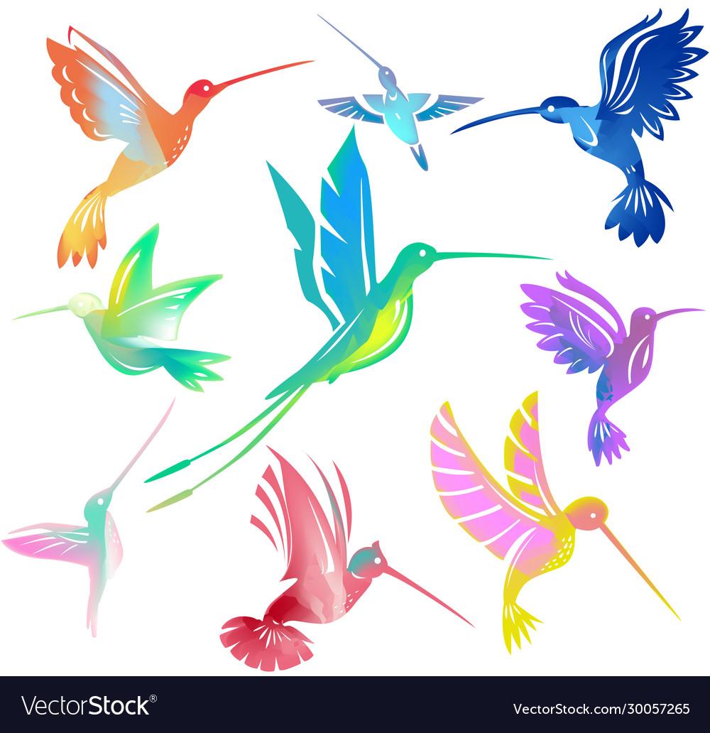 Set colorful flying hummingbirds