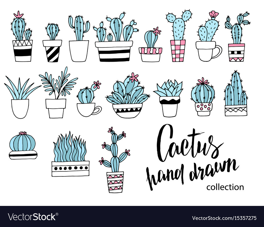 Cactus doodle set hand drawn vector image