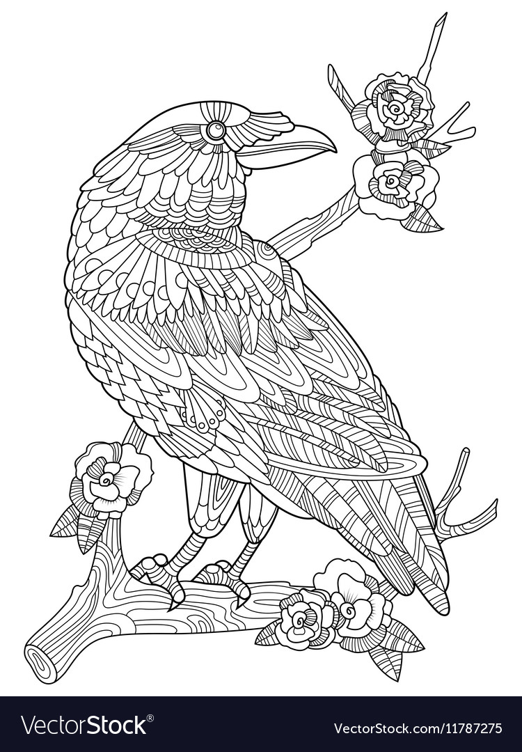 Crow bird coloring book for adults