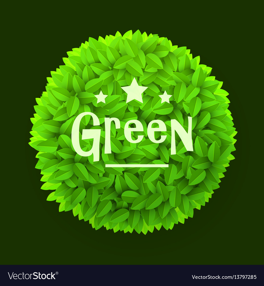 Green leaves circle frame isolated on dark vector image