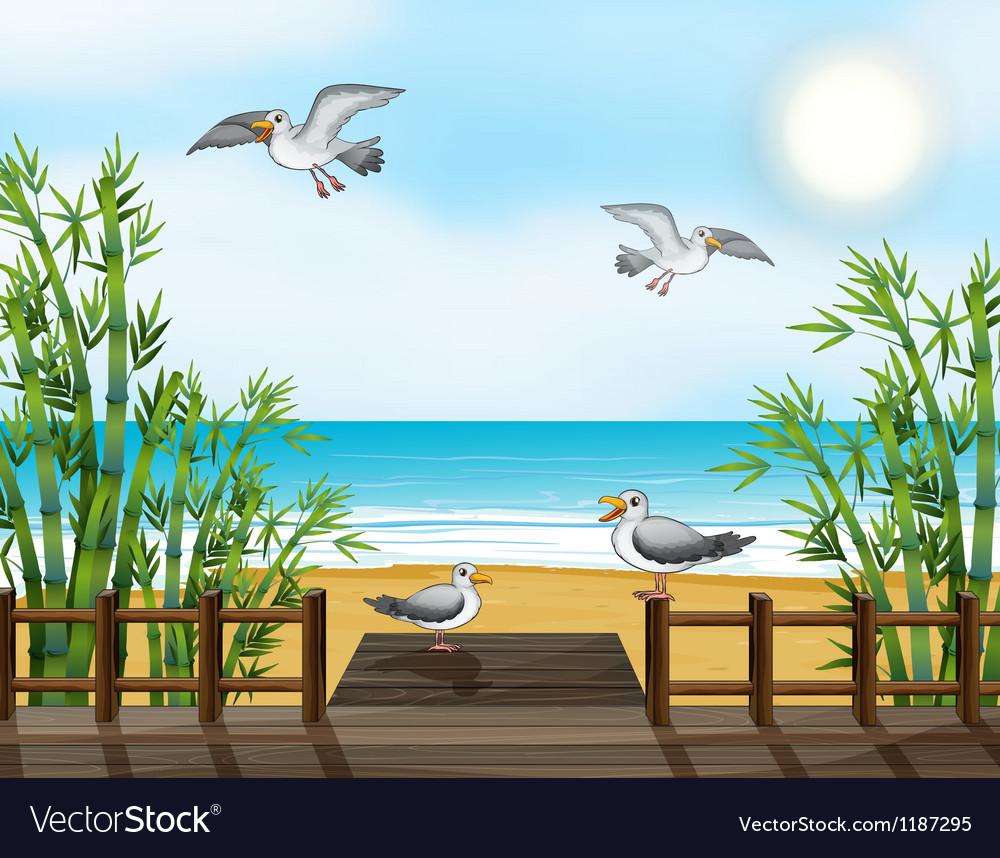 A flock of birds at the bridge