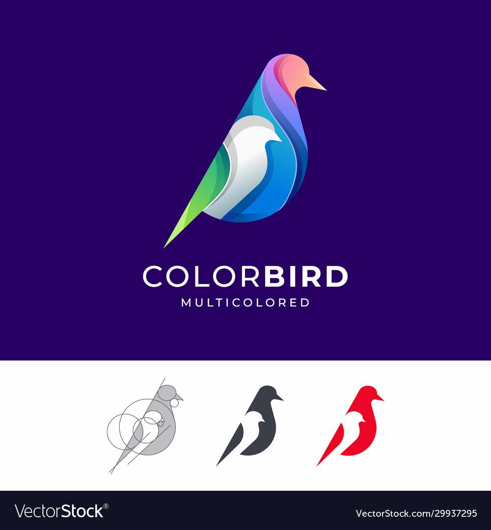 Bird colorful logo