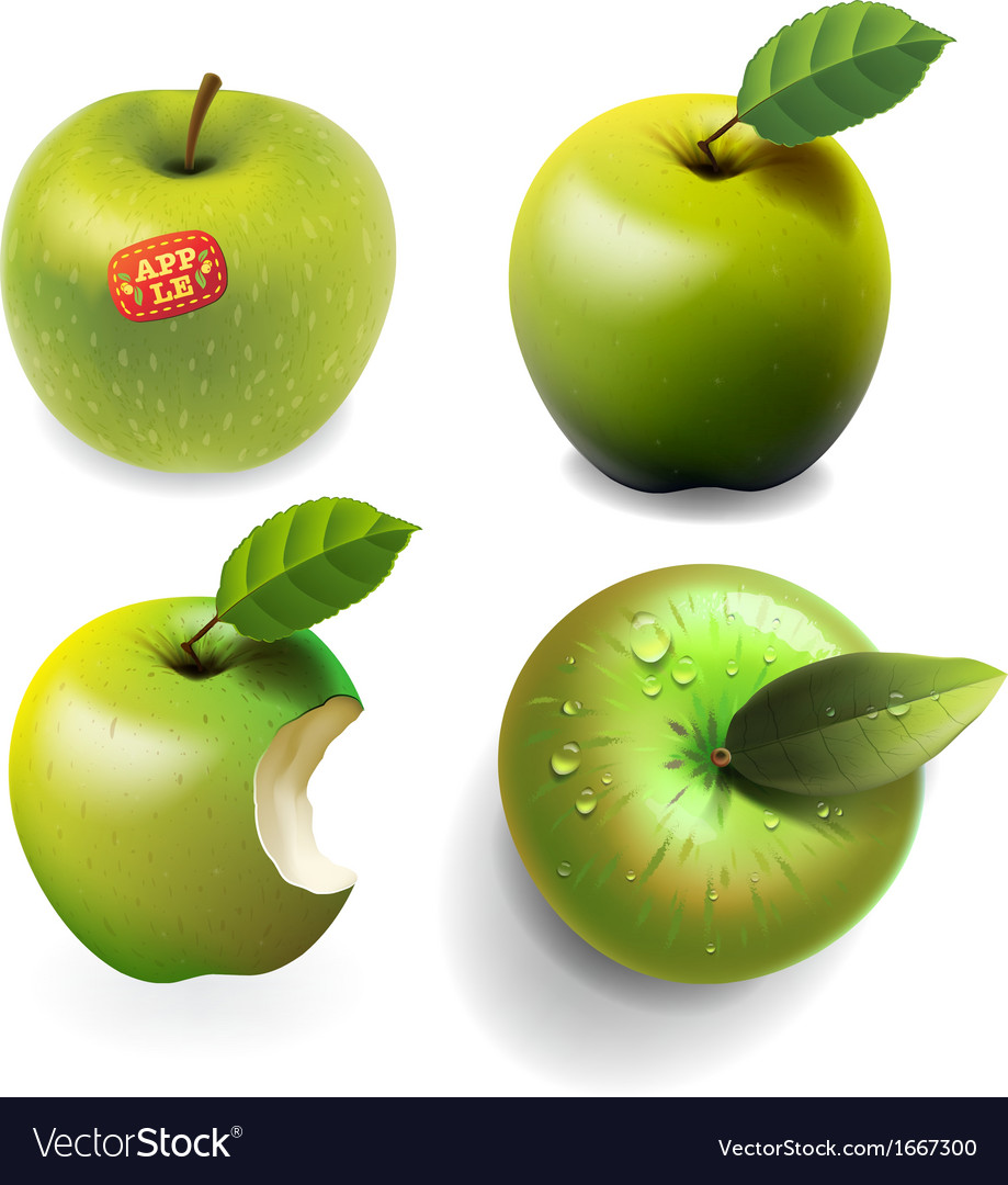Set of green ripe Apples four various view