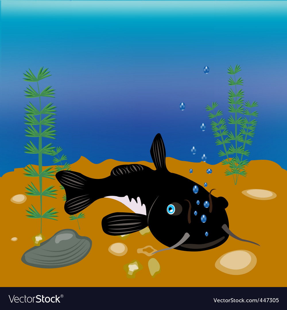 Bigfish vector image
