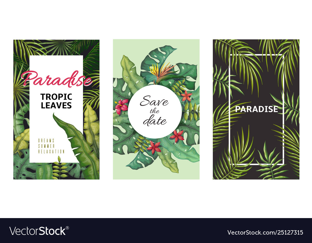 Tropical leaves posters jungle plants summer