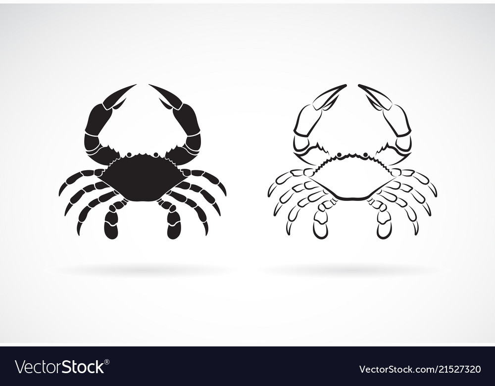 Two crab on white background animals crab icon