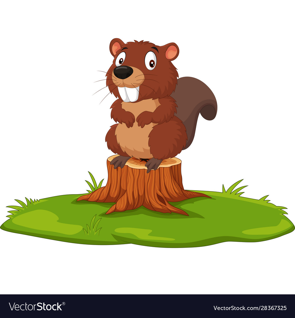 Cartoon Beaver On Tree Stump Royalty Free Vector Image Welland tree stump stool live edge, natural edge side table, plant stand, nightstand wooden stump shaped ottoman,natural woods upholstered footstool footrest pouffe creative log soft. vectorstock