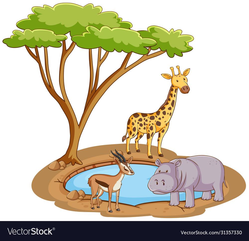 Scene with wild animals pond