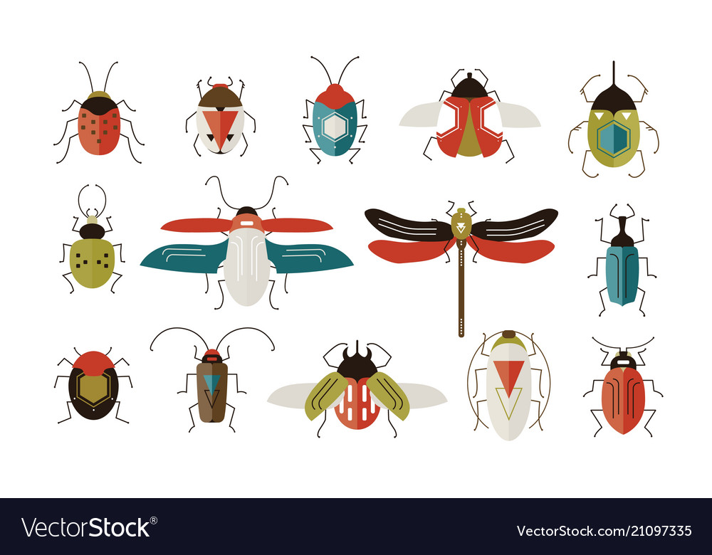 Collection various colorful geometric insects