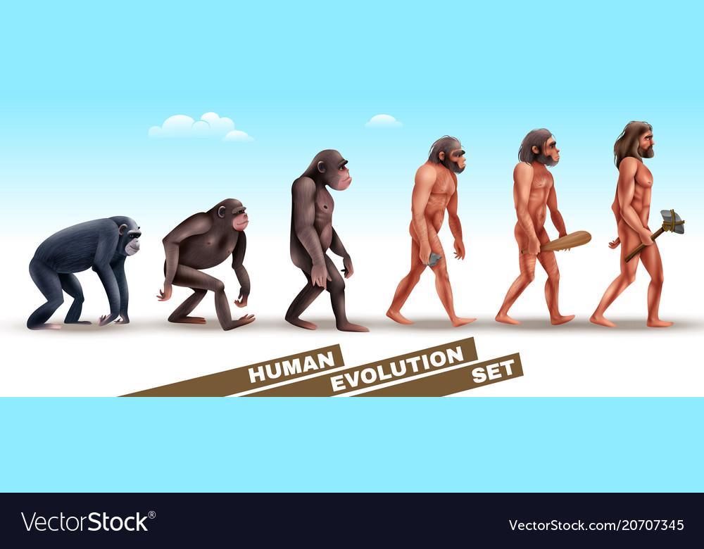 Human evolution characters set
