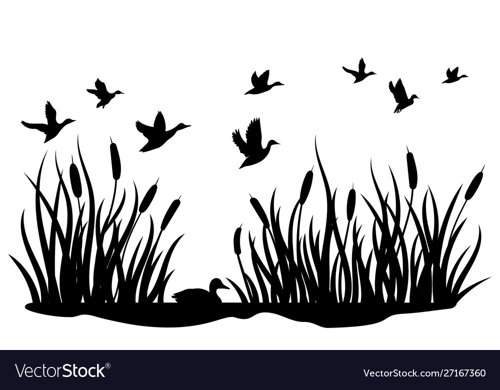 A flock wild ducks flying over a pond