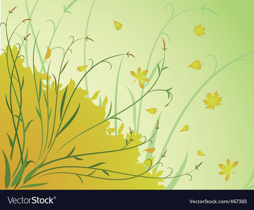 Floral autumn background stem leaves vector image