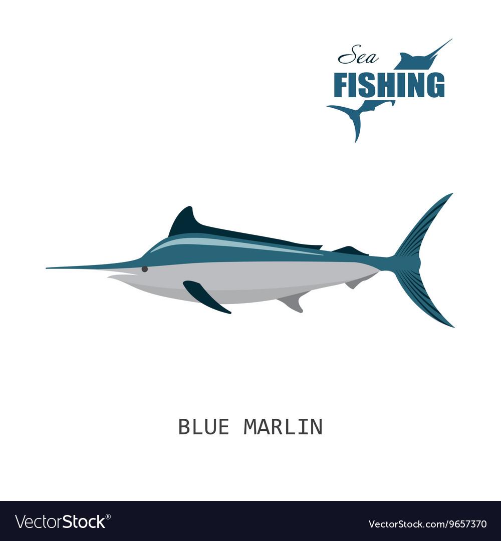 Blue marlin Sea fishing