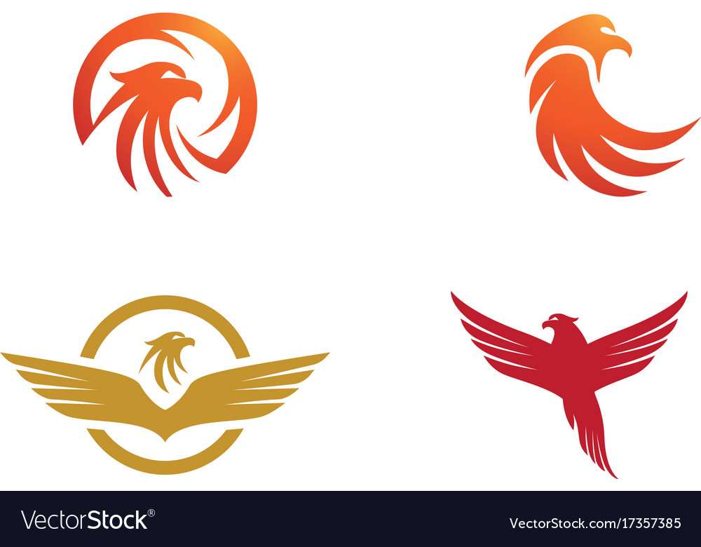 falcon eagle bird logo template icon royalty free vector